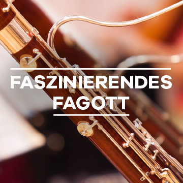 Faszinierendes Fagott